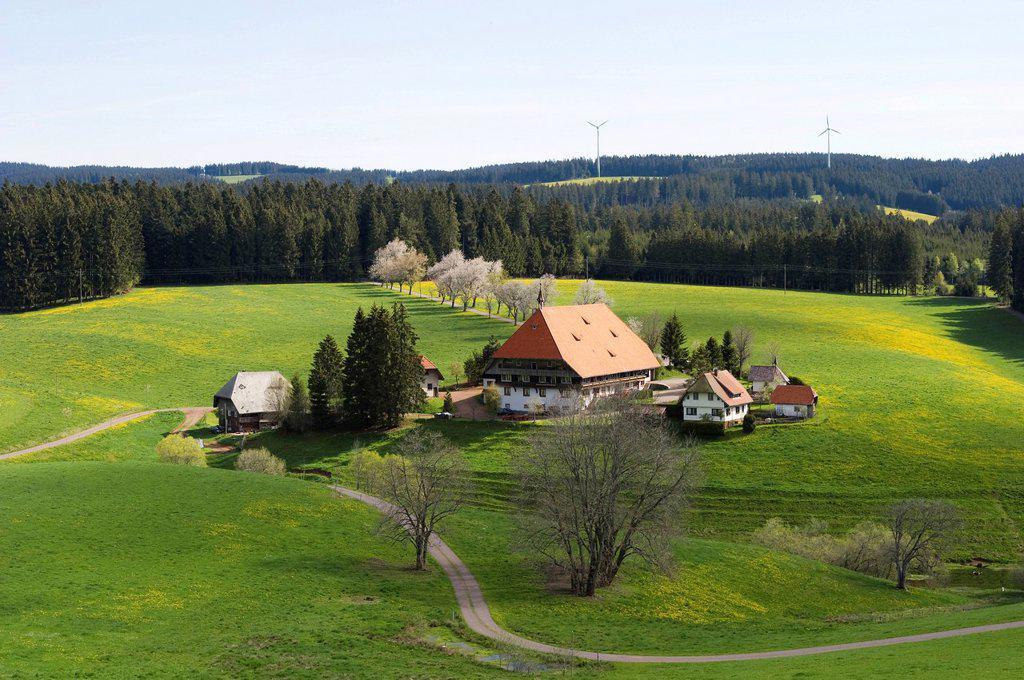 Stock Photo: 1848-613013 Oberfallengrundhof farmhouse near Furtwangen, Black Forest, Baden_Wuerttemberg, Germany, Europe