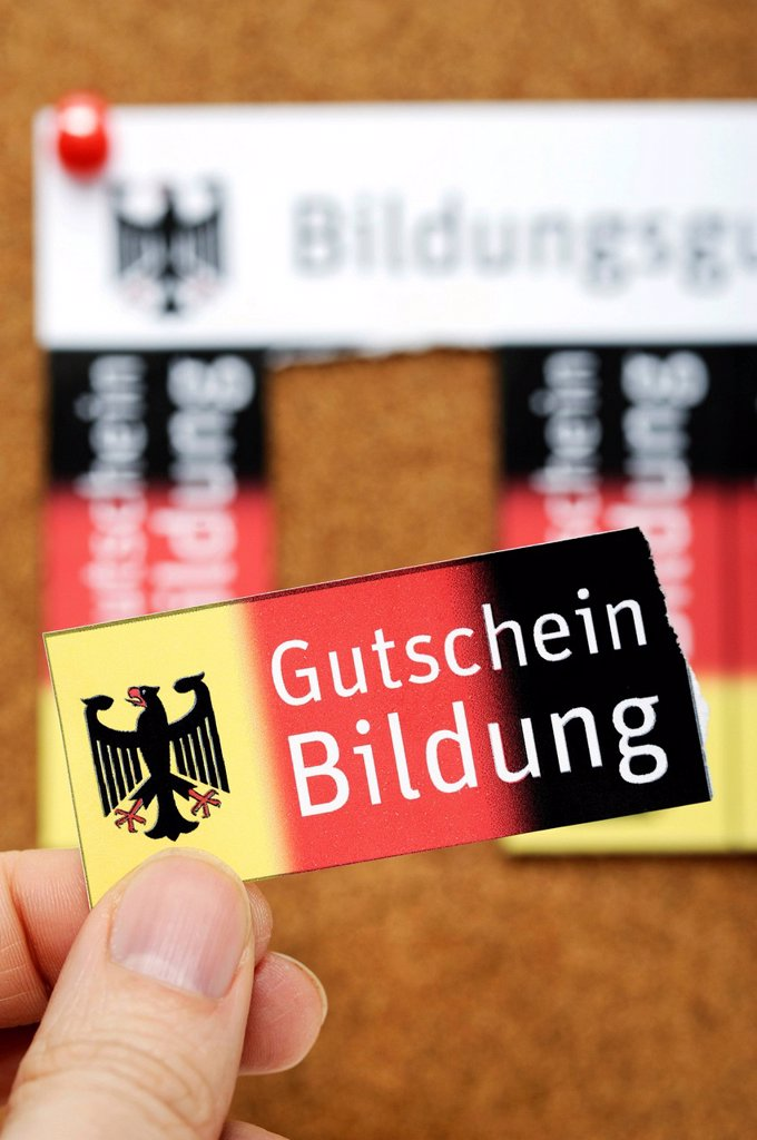 Stock Photo: 1848-614316 Vouchers on a noticeboard, Bildungsgutschein coupons, lettering Gutschein Bildung, German for education voucher, symbolic image