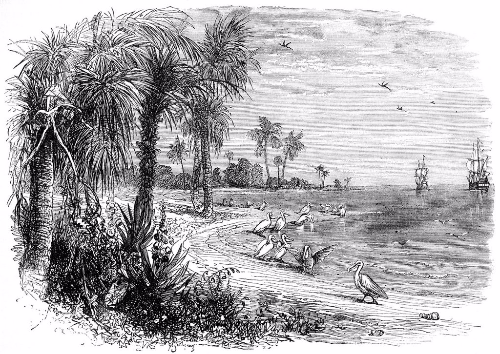 Stock Photo: 1848-616733 Historical drawing from the U.S. history, portrait of, the coast of Florida around 1603