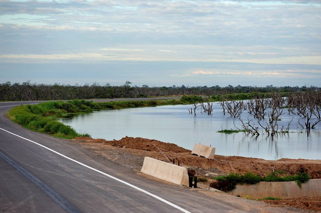 A road construction project supported by the Inter_American Development Bank, IDB, on the floodplains of the Pilcomayo River, on the one side, the road prevents the drainage of water, on the other it leads to the marches drying up, Banado la Estrella, For. A road construction project supported by the Inter_American Development Bank, IDB, on the floodplains of the Pilcomayo River, on the one side, the road prevents the drainage of water, on the other it leads to the marches drying up, Banado la E : Stock Photo