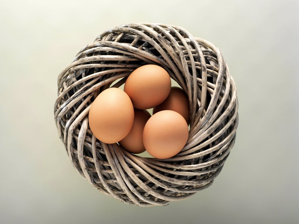 Brown eggs in a nest, wreath : Stock Photo
