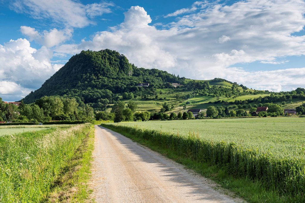 Gravel road, hiking trail leading to the Hohenhewen volcano, Hegau landscape, Singen, Baden_Wuerttemberg, Germany, Europe : Stock Photo