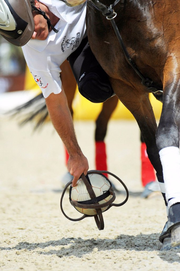 A horseball player is picking up the ball, Manga Racino, Lower Austria, Austria, Europe : Stock Photo