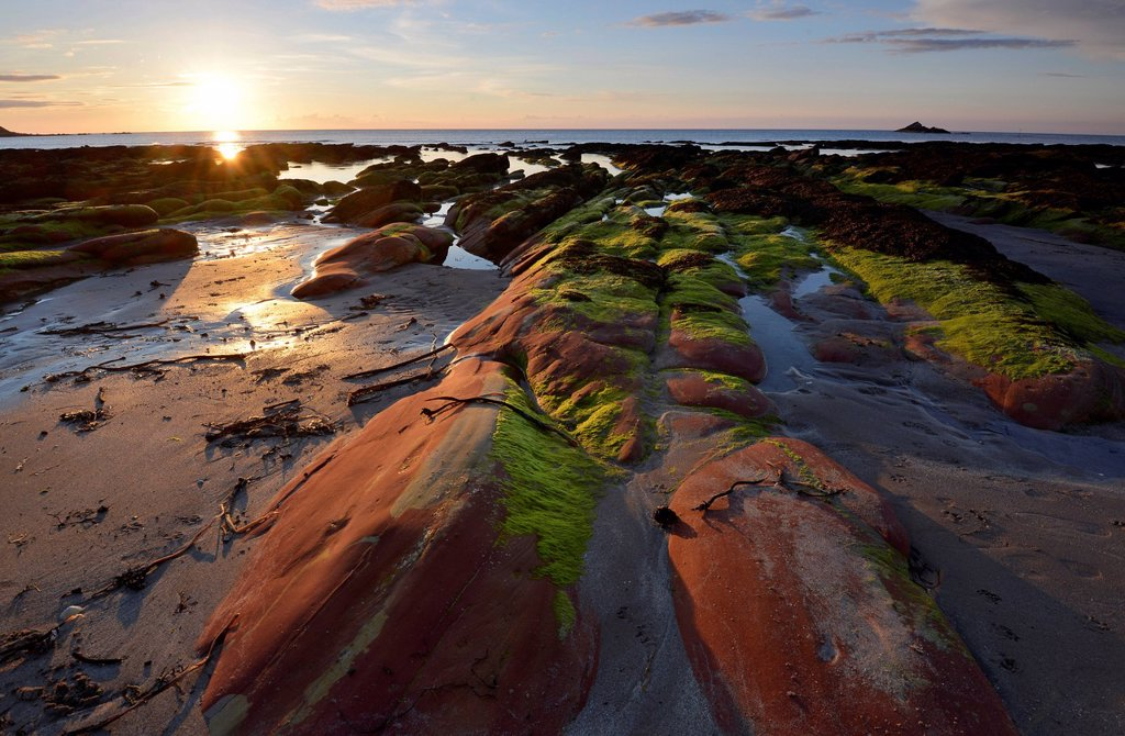Stock Photo: 1848-624851 Low sun, summer solstice, algae_covered rocks in the sea at low tide, cliffs at Gardenstown, Banffshire, Scotland, United Kingdom, Europe