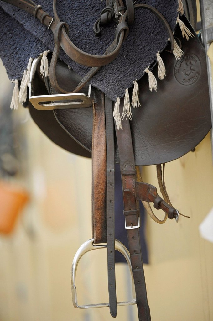 Polo saddle, Ebreichsdorf, Lower Austria, Austria, Europe : Stock Photo