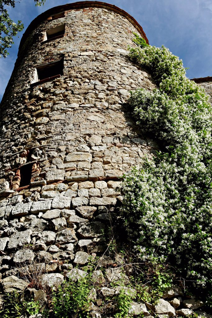 Wall tower, Canneto, Tuscany, Italy, Europe : Stock Photo