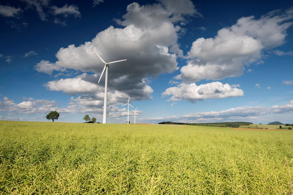Stock Photo: 1848-627551 Wind turbines in a canola field, Stetten, Hegau region, Baden_Wuerttemberg, Germany, Europe