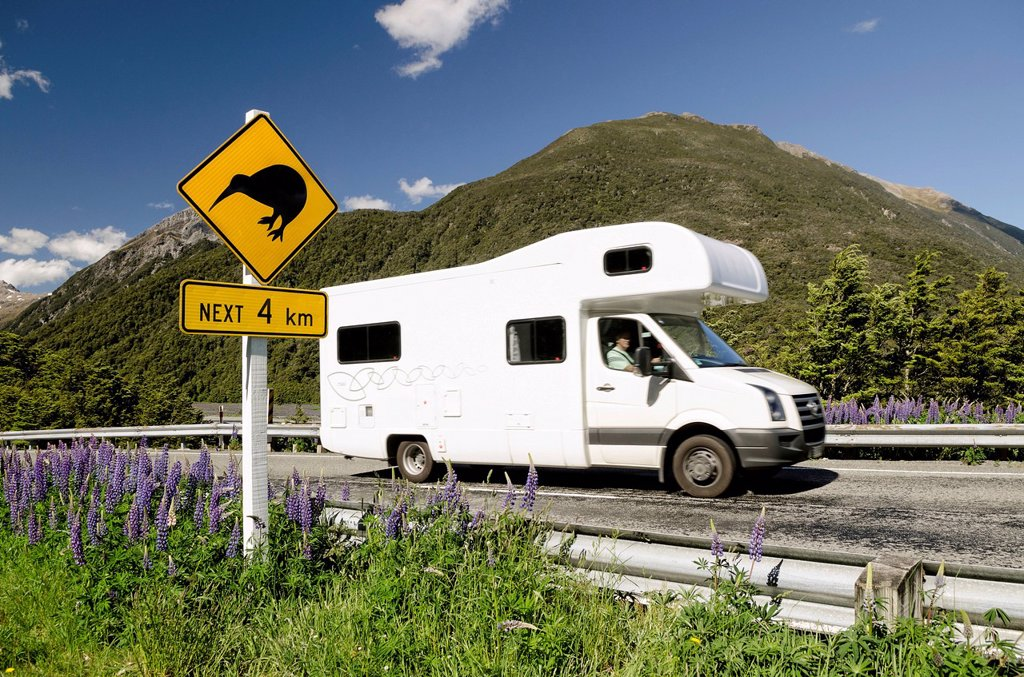 Campervan driving past a warning sign on a highway, Kiwis next 4 km, Porters Pass, Craigieburn Range, Canterbury, South Island, New Zealand, Oceania : Stock Photo