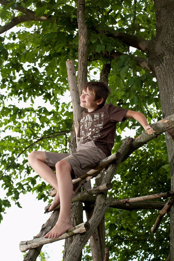 Stock Photo: 1848-630452 Boy sitting at a tree house