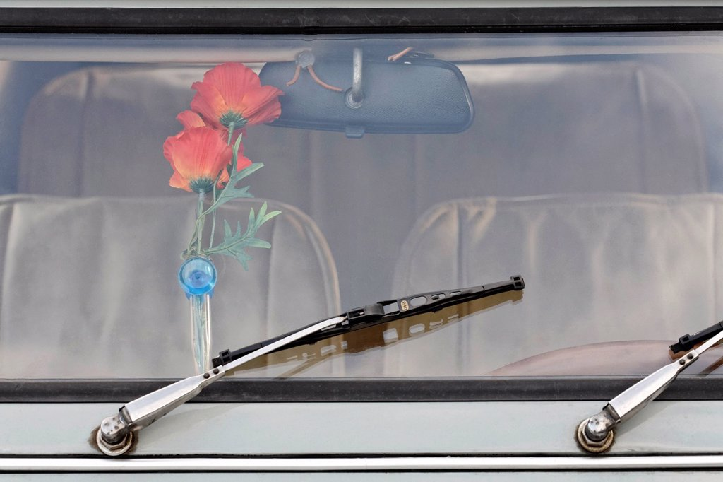 Stock Photo: 1848-630823 Kitschy vase of plastic flowers behind the windshield of an old Citroen 2CV, Germany, Europe