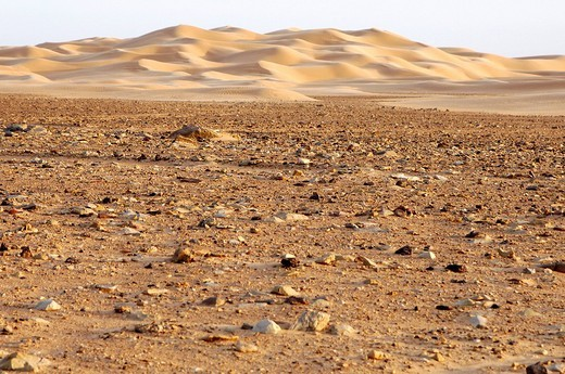 Transition between a barren rocky desert, hamada, and sandy desert, erg, Sahara, Libya : Stock Photo