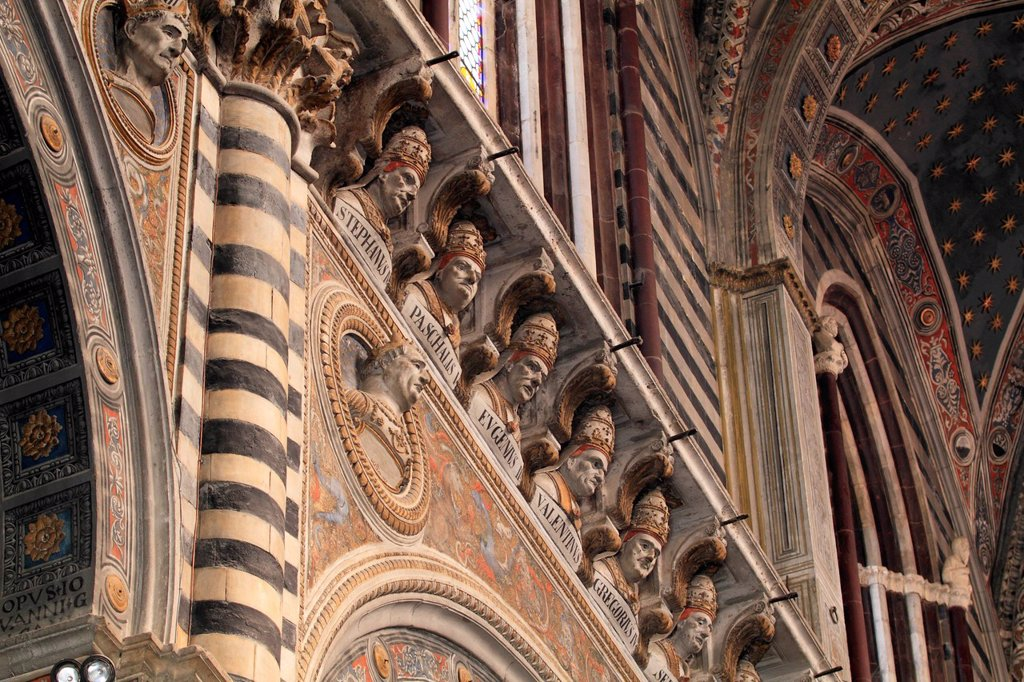 Stock Photo: 1848-647454 Busts of popes on the cornice of the nave, Siena Cathedral, Cathedral of Santa Maria Assunta, Siena, Tuscany, Italy, Europe
