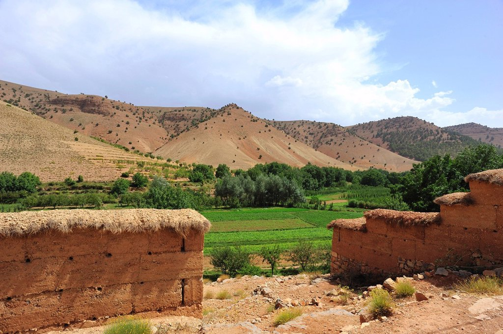 Landscape, river valley with fields in the High Atlas mountains, adobe brick walls covered with straw at front, Ait Bouguemez Valley, High Atlas Mountains, Morocco, Africa : Stock Photo