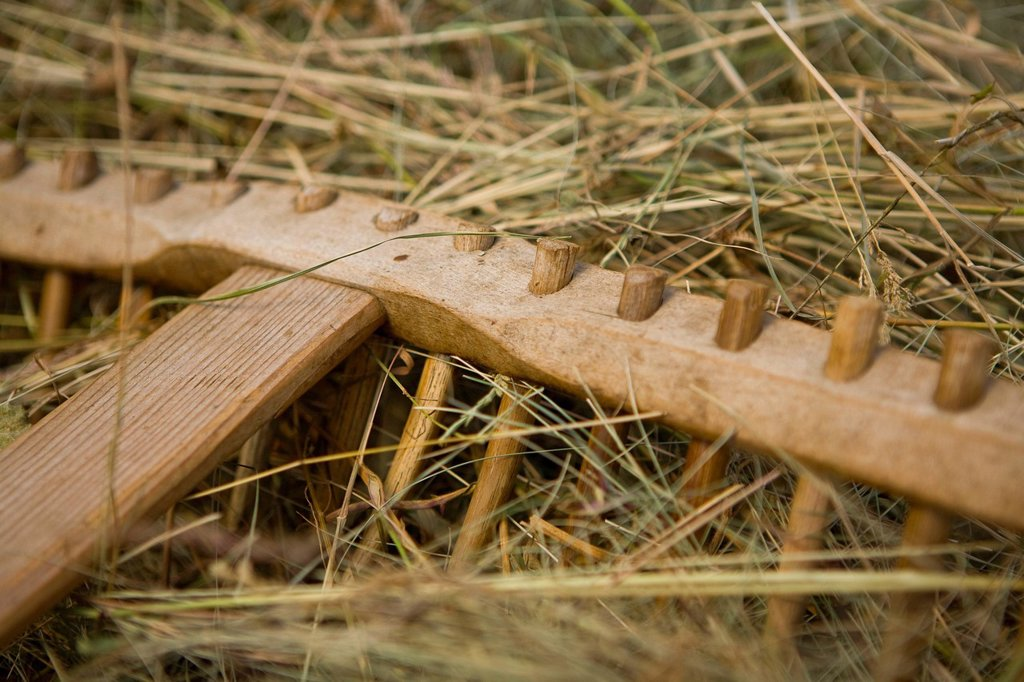 Hay rake, haymaking in summer : Stock Photo