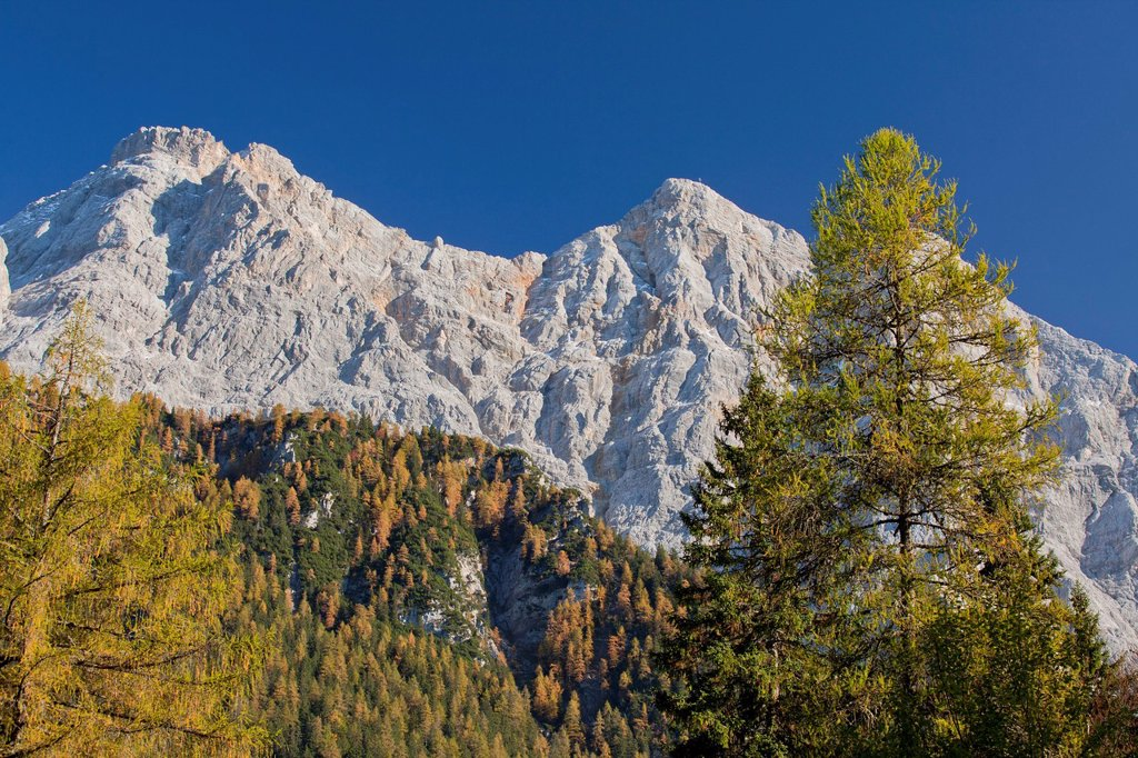 View of Mt. Zugspitze in autumn, Germany, Austria, Europe : Stock Photo