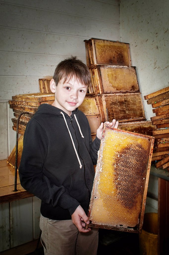 Stock Photo: 1848-654776 Boy with a honeycomb at a beekeeper´s