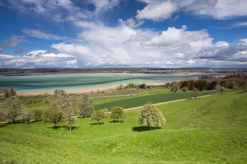 Stock Photo: 1848-655023 Cultural landscape near Ermatingen on Lake Constance in spring, Switzerland, Europe, PublicGround