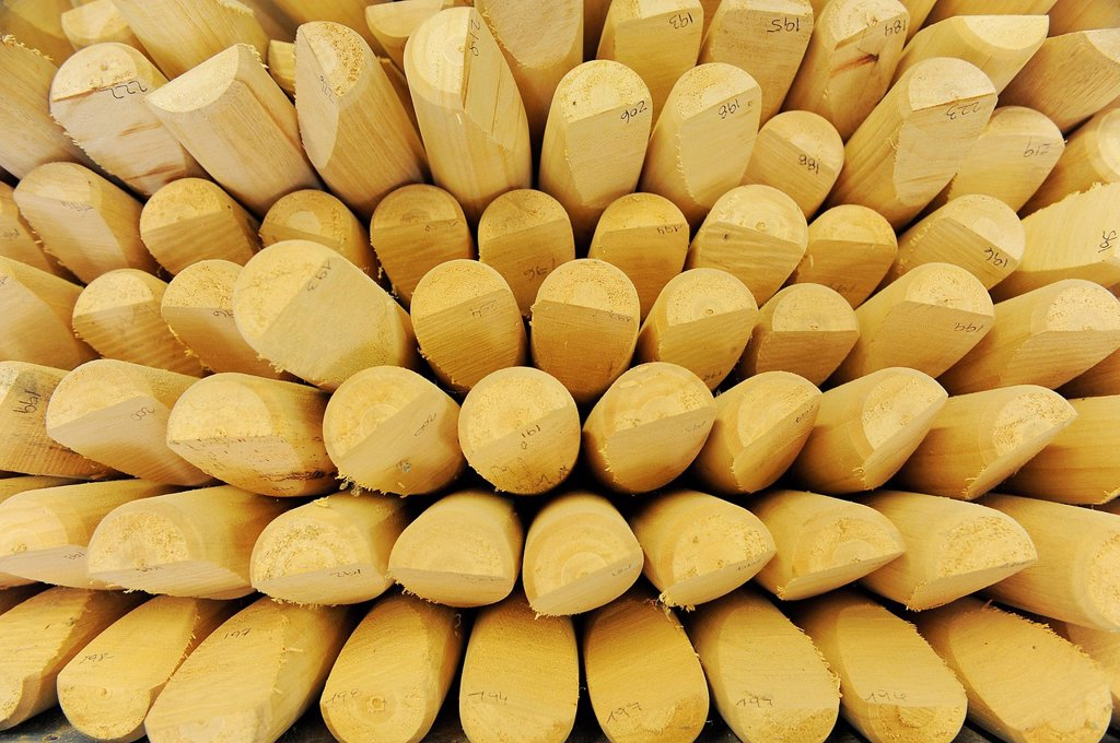 Stock Photo: 1848-655356 Blanks for mallets, so_called cigars, at a polo factory, Zapala, Pilar, Argentina, South America
