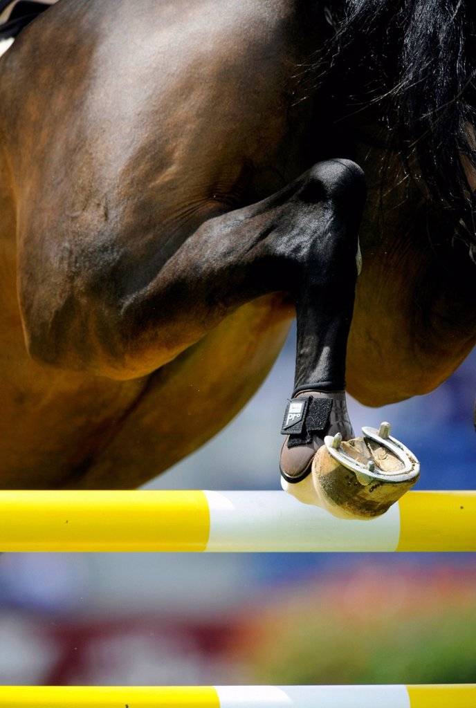 Show jumping, STAWAG Prize, World Equestrian Festival, CHIO Aachen 2012, Soers stadium, Aachen, North Rhine_Westphalia, Germany, Europe : Stock Photo
