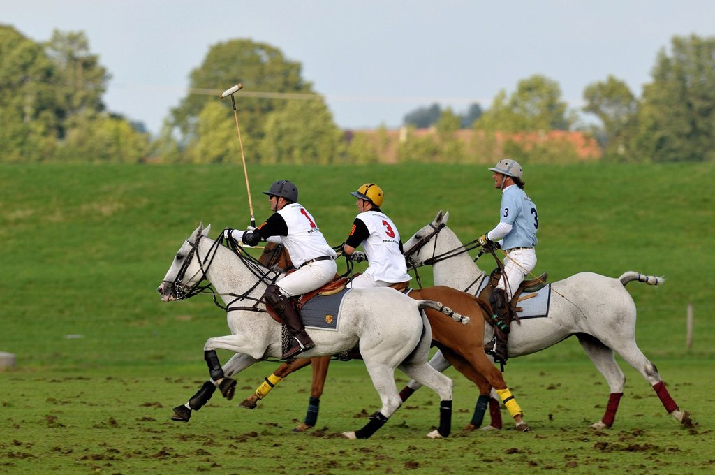 Stock Photo: 1848-656825 Polo players riding their horses, Reinhold Hofmann, left, and Patrick Maleitzke, center, of the Porsche Olympiapark team, followed by Cesar Ruiz_Guinazu of the Hacker_Pschorr team, Bucherer Trophy 2010, polo tournament, Thann, Holzkirchen, Upper Bavaria,. Polo players riding their horses, Reinhold Hofmann, left, and Patrick Maleitzke, center, of the Porsche Olympiapark team, followed by Cesar Ruiz_Guinazu of the Hacker_Pschorr team, Bucherer Trophy 2010, polo tournament, Thann, Holzkirchen, Uppe