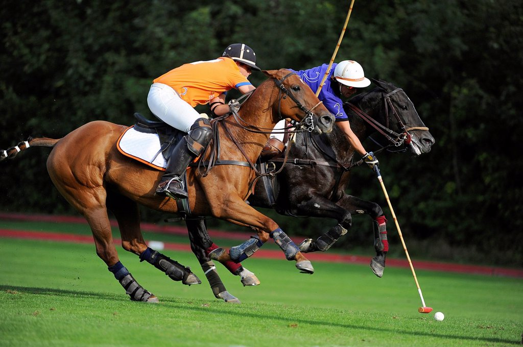 Stock Photo: 1848-657114 Two polo players are fighting for the ball, Polo European Championships 2010, Ebreichsdorf, Austria, Europe