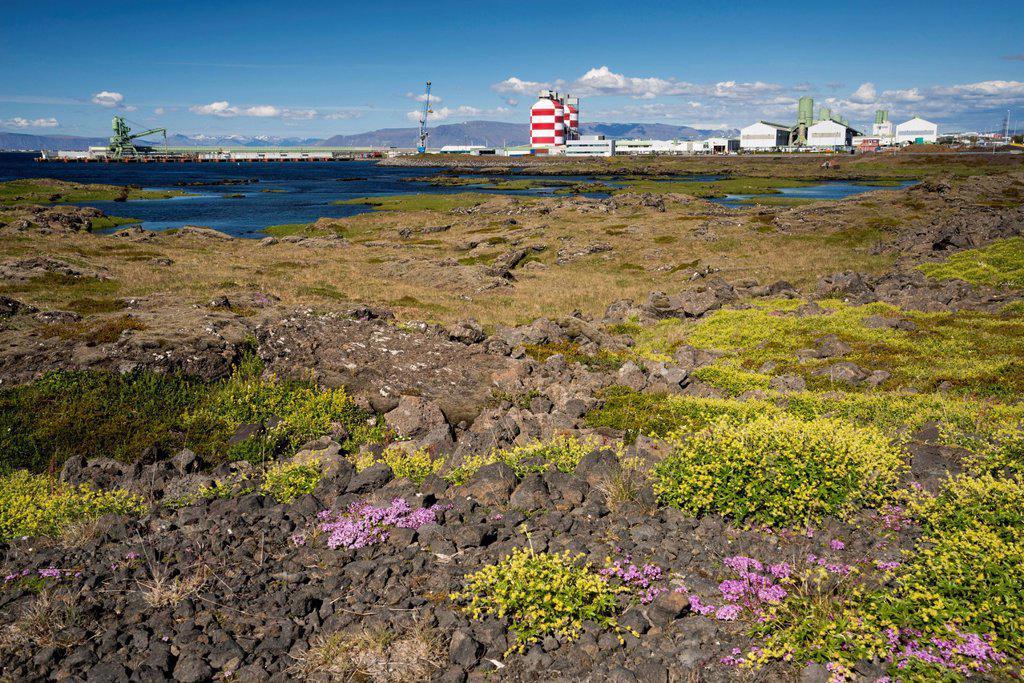 Aluminum plant, town of Straumsvík, Reykjanes peninsula, Iceland, Europe, PublicGround : Stock Photo