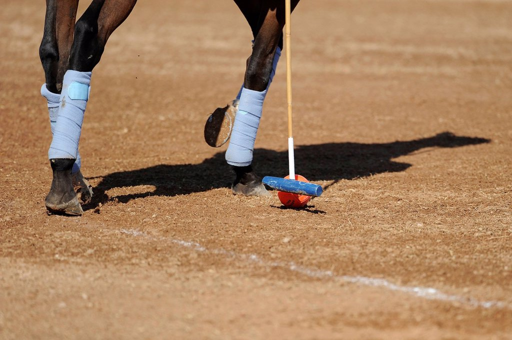 Stock Photo: 1848-662456 A polo player is hitting the slightly larger Arena Ball, Ibiza, Spain, Europe