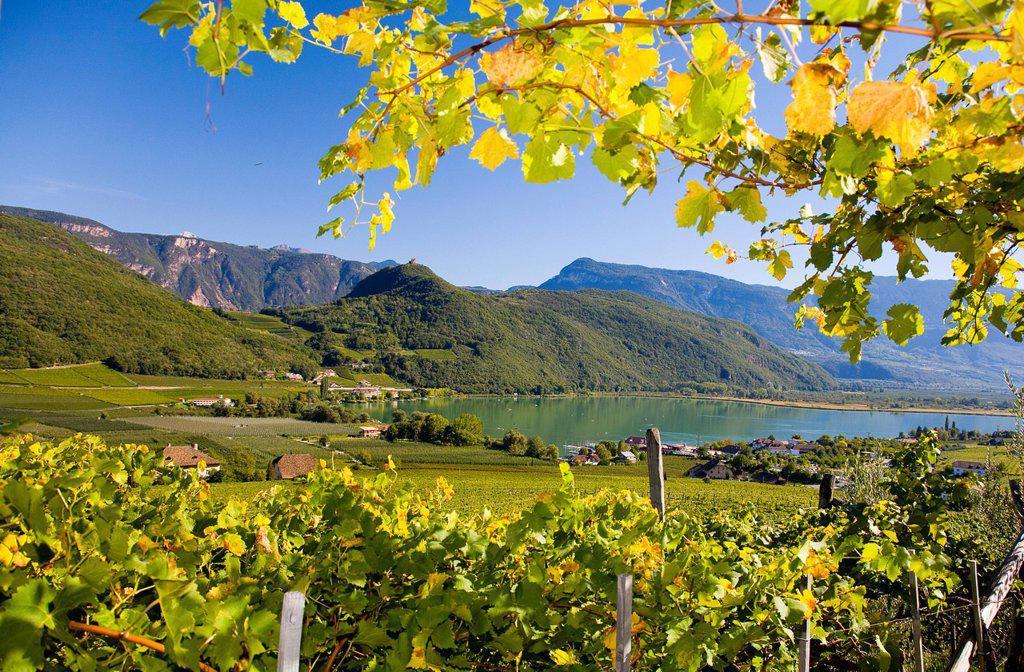 Stock Photo: 1848-662770 Landscape on Lake Kaltern, province of Bolzano_Bozen, Italy, Europe