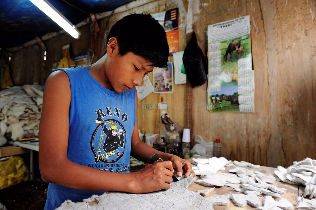 Child labour, boy producing soft toys and carpets from alpaca fur in a small family business, Pachamac, Lima, Peru, South America : Stock Photo