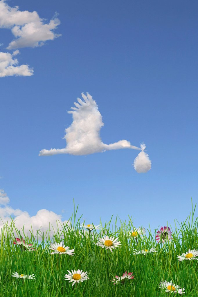 Cloud formation forming the shape of a stork bringing a baby in the sky above a flowering meadow, illustration : Stock Photo