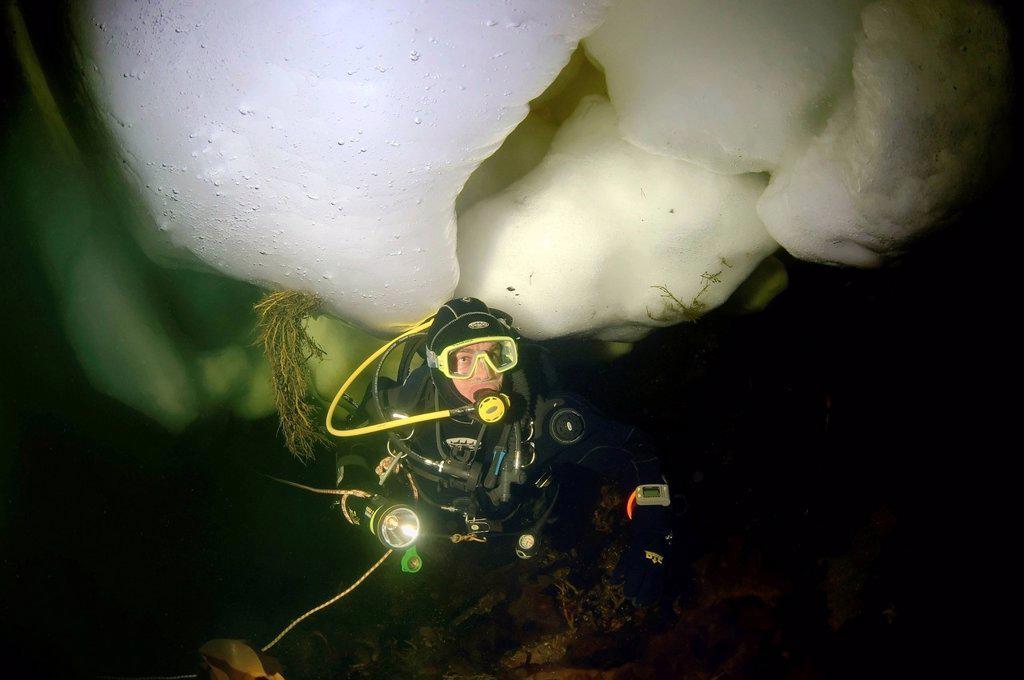 Diver, ice_diving, White Sea, Karelia, north Russia, Arctic : Stock Photo