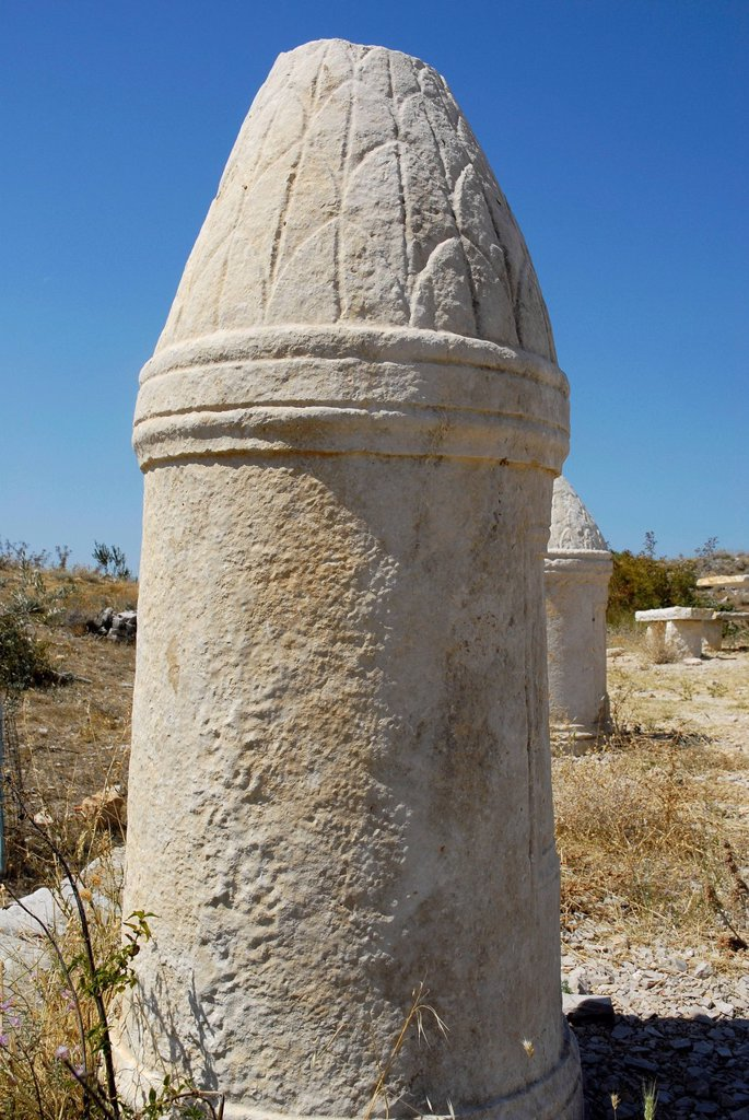 Short Roman column with ornamentation, Roman town of Asseria near Benkovac, Dalmatia, Croatia, Europe : Stock Photo