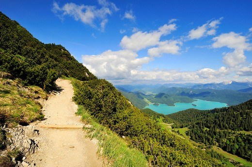 Stock Photo: 1848-67101 Trail to Mt. Herzogstand, in the back the Walchensee lake, district of Bad Toelz_Wolfratshausen, Bavaria, Germany, Europe