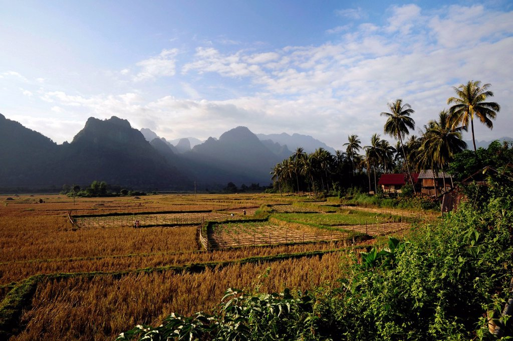 Stock Photo: 1848-671690 Rice fields and karst mountains near Vang Vieng, Laos, Southeast Asia, Asia