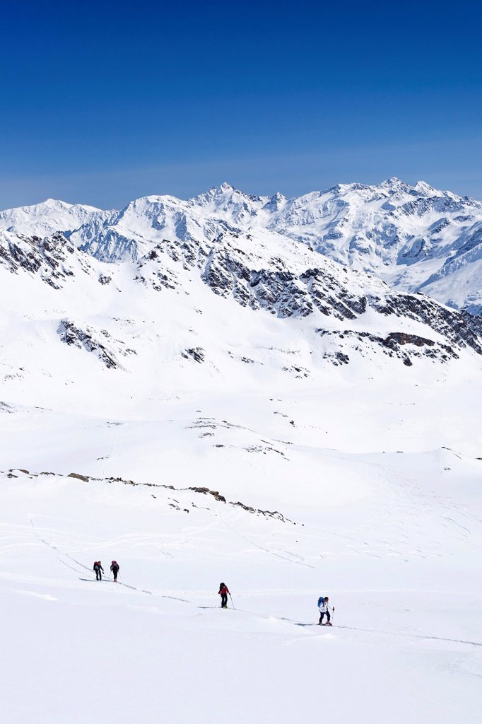 Ski touring on the Madritschjoch overlooking the Martell Valley, Solda in winter, behind the Koenigsspitze peak, South Tyrol, Italy, Europe : Stock Photo