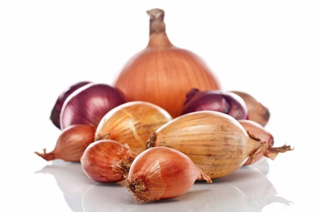 Stock Photo: 1848-673961 Different varieties of onions