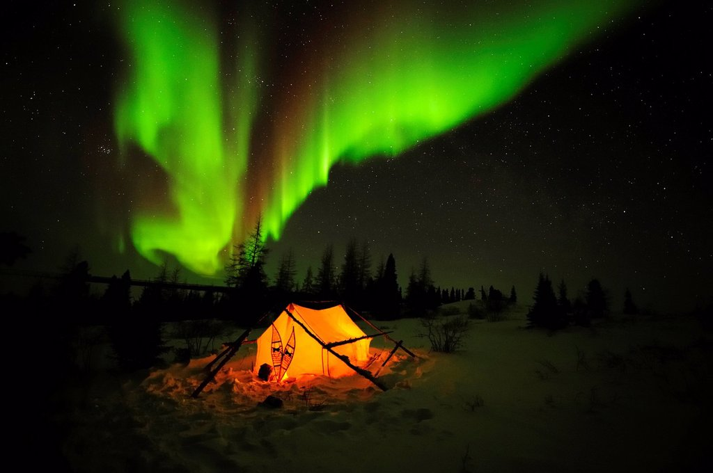 Northern Lights, aurora borealis above the Arctic, Hudson Bay, Manitoba, Canada : Stock Photo