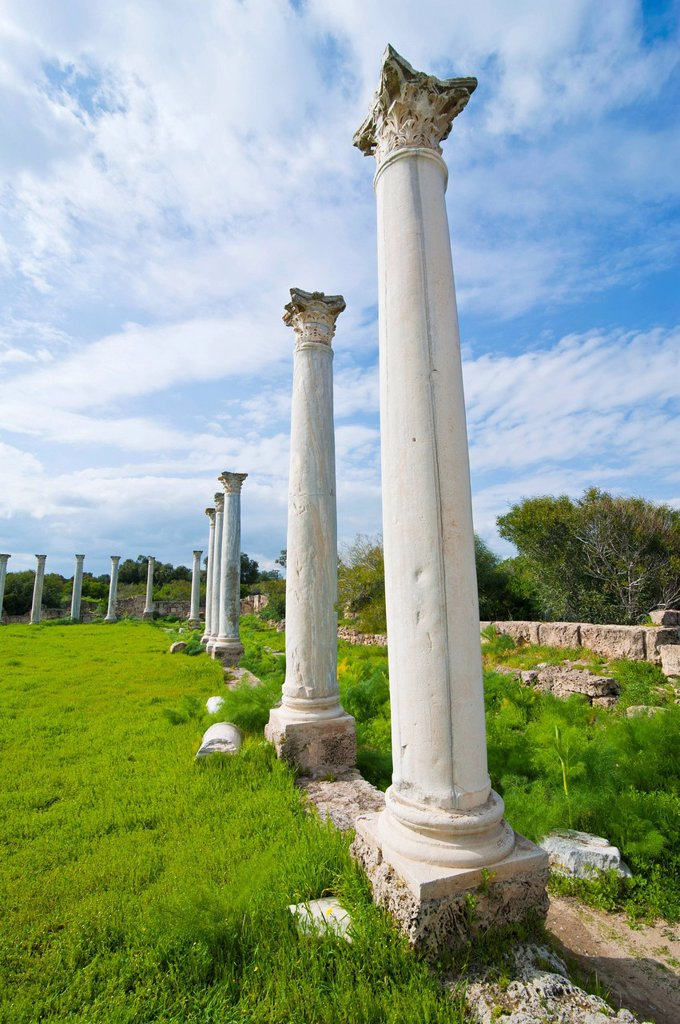 Stock Photo: 1848-677795 The Roman archaeological site of Salamis, Turkish part of Cyprus