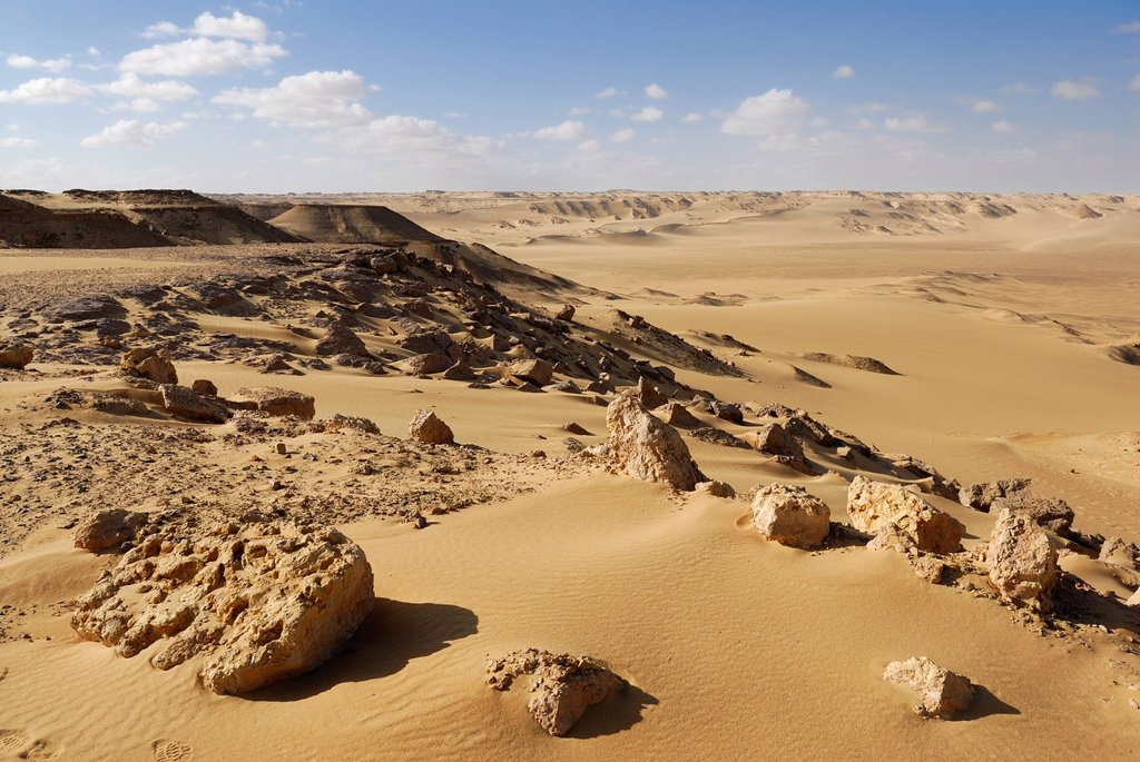 Desert landscape near the Farafra depression, Western Desert, Egypt, Africa : Stock Photo