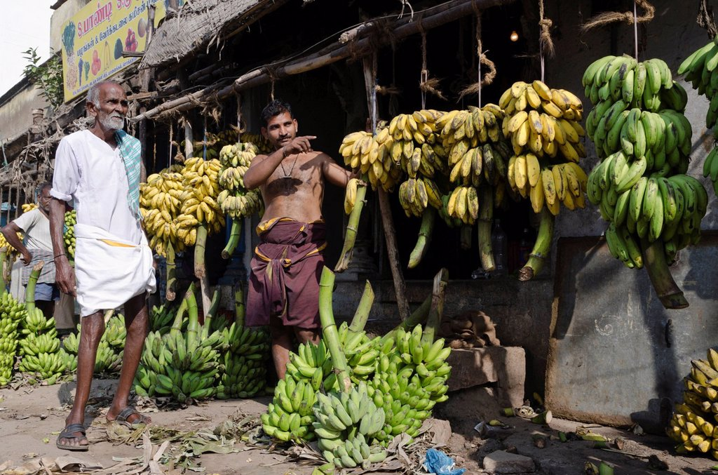 Stock Photo: 1848-680201 Bananas for sale, wholesale market in the streets of Madurai, Tamil Nadu, India, Asia