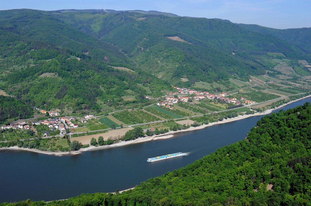 Excursion boat on the Danube river, vineyards, Danube Valley, UNESCO World Heritage Site Wachau, Lower Austria, Austria, Europe : Stock Photo