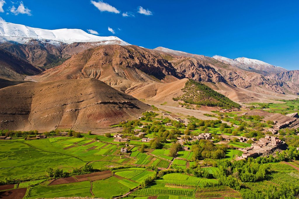 Stock Photo: 1848-684083 Landscape with cultivated fields and small settlement in Ait Bouguemez Valley, High Atlas Mountains, Morocco, Africa