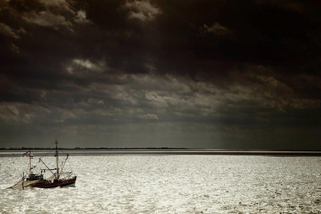 Shrimp cutter at sea, dusk, North Sea coast, Germany, Europe : Stock Photo