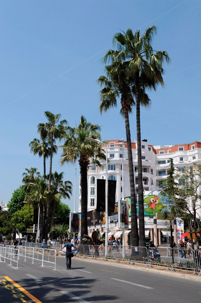 Stock Photo: 1848-688781 The Croisette in Cannes, Cote d´Azur, France, Europe