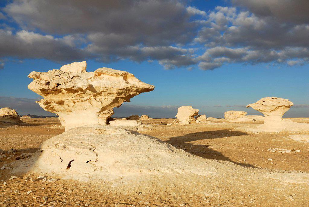 Stock Photo: 1848-688907 Mushroom_shaped limestone rock formation, White Desert, Farafra Oasis, Western Desert, Egypt, Africa