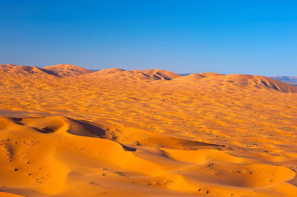 Stock Photo: 1848-691484 Sand dunes, Erg Chebbi, southern Morocco, Africa