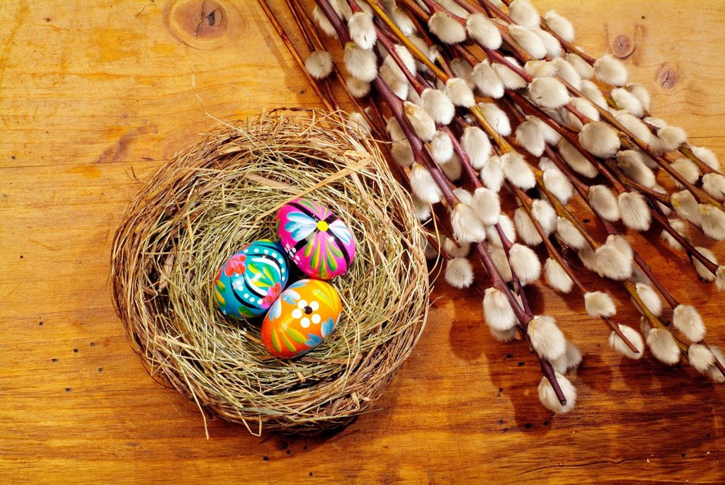 Stock Photo: 1848-692189 Colourful Easter eggs in a nest and catkins