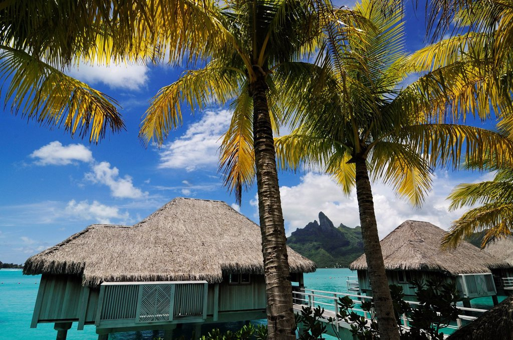 Huts on stilts, St. Regis Bora Bora Resort, Bora Bora, Leeward Islands, Society Islands, French Polynesia, Pacific Ocean : Stock Photo