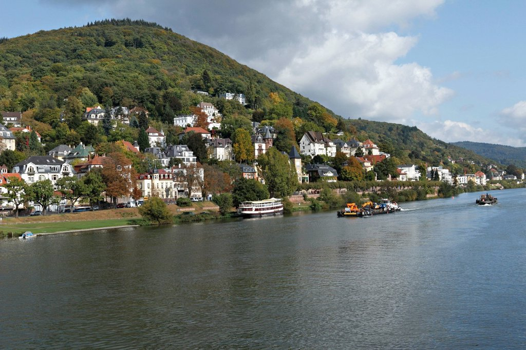 Stock Photo: 1848-696853 Villas on the Neckar River, Heidelberg, Baden_Wuerttemberg, Germany, Europe