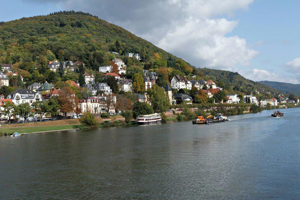 Villas on the Neckar River, Heidelberg, Baden_Wuerttemberg, Germany, Europe : Stock Photo